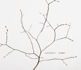 k. leimer : lesser epitomes