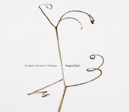 gregory taylor :amalgam : aluminum / hydrogen